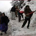 snow cutter-