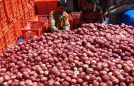 सेब आयात को प्रोत्साहन से राजनीति गरमाई