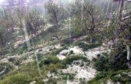 ओलावृष्टि से बागवानों को अरबों का नुकसान