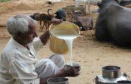 क्या इस तरह होगी किसानों की आय दुगनी?